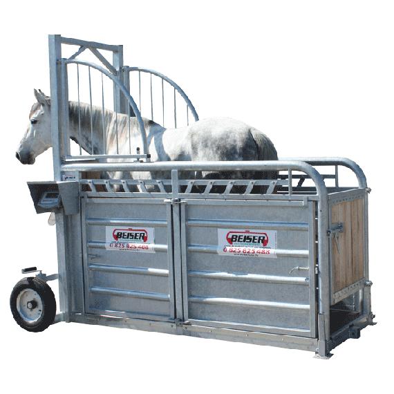 Cage de pesée et de contention pour chevaux