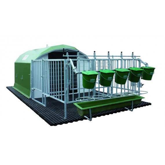 Full collective 5-calf cage with full park and duckboard