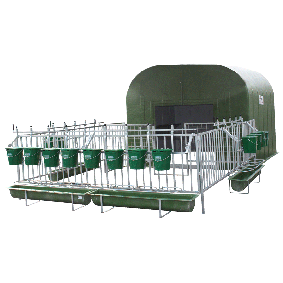Complete collective calf hut for 12 to 16 calves with pen and full grating