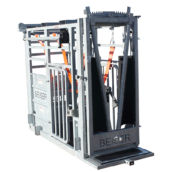 Cattle chute (guillotine front gate + back gate with side opening)