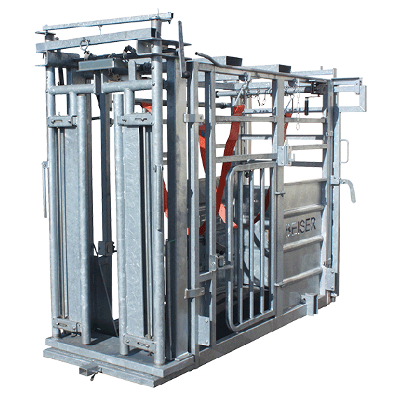 Cattle chute (self-locking front gate + back gate with side opening)