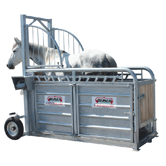 Weighing crate for horses