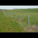 Beiser Environnement - Piquet en PVC recyclé Ø 60 mm 1.75 m