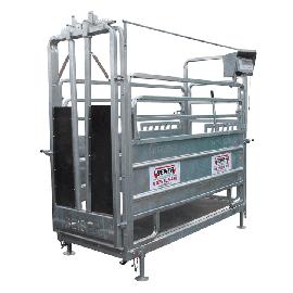 Cage de pesage et de contention pour bovin