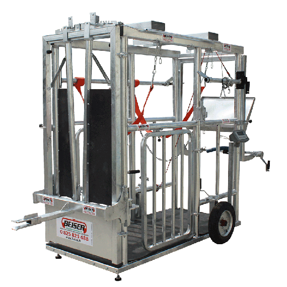 Behandelbox voor groete rundvee (Grote breedte)